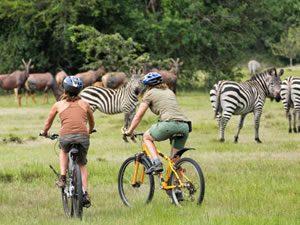 Bicycle Safaris in Lake Mburo