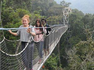 Canopy Walk in Nyungwe