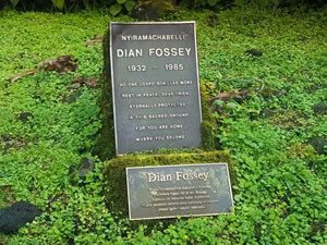 Hike to Dian Fossey Grave Yard