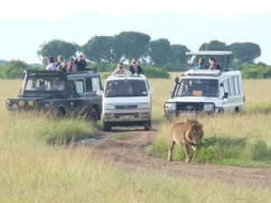 Game Drives in Kidepo