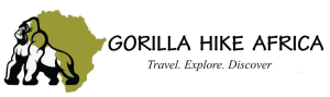 Gorilla Hike Africa