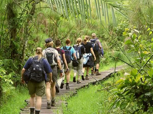 Nature Walks in Bigodi Wetland