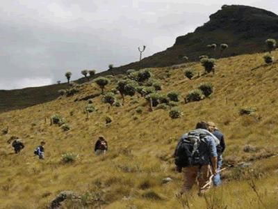 Mountain Climbing in Abardare